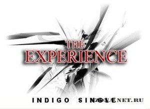 The Experience - Indigo [Single] (2010)
