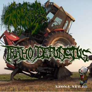Smothered bowels - Traho defunctus (EP) (2010)