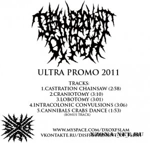 Disfigurement Of Flesh - Ultra Promo (2011)
