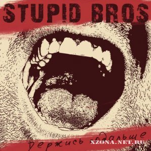Stupid Brothers – 2 альбома (2010-2012)