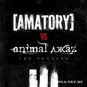 [AMATORY] vs Animal ДжаZ - Три Полоски (Internet-Single) (2012)
