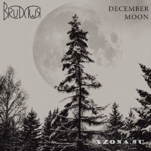 Brudywr - December Moon (2012)