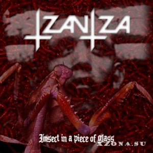 Tzantza - Insect In A Piece Of Glass (2012)