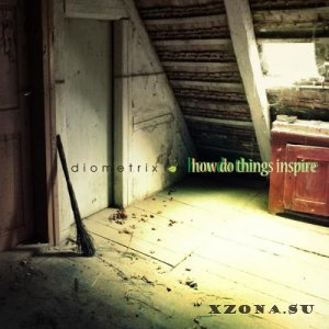 Diometrix - How Do Things Inspire (2012)