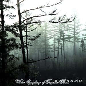 Leprechaun & [g]dreamcall - Winter Symphony of Forgotten Forests (Split) (2013)